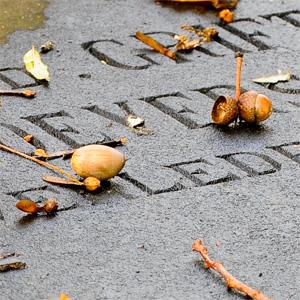 Za izdelavo nagrobnikov se uporabljajo različni kamni, ki jih mora arhitekt ali kamnosek pravilno izbrati glede na zasnovo nagrobnika.